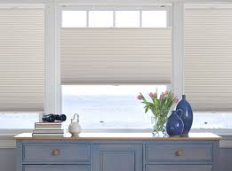 Blackout Cordless Roman Shade Cordless Top Down Bottom Up Cellular Shades Blindsshopper Com