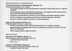 Example Of It Resume by Stupefying Sample It Resume 12 Information Technology It Cv