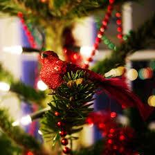 robin bird christmas ornaments
