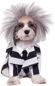 two face costume spirit halloween 533 best halloween pets images on pinterest animals costume