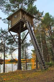 Backyard Treehouse Ideas Small Tree House With Wood Treehouse And Lake Also Trees