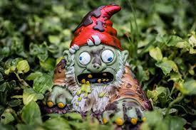 zombie garden gnome in koreatown la times