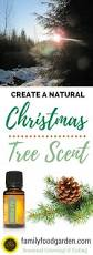 how to get that natural christmas tree smell without a real tree