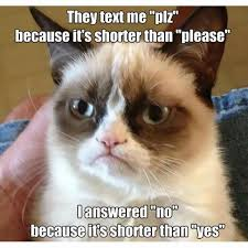 Memes S - 16 of the best grumpy cat memes catster