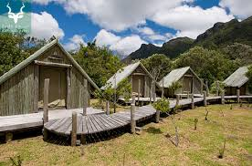 table mountain property management south african national parks sanparks official website