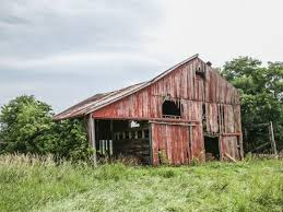 Man Buys Barn Full Of Cars From Tables To Accent Walls Wood From Old Indiana Barns Finds New
