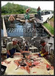 aquaculture u0026 mariculture lexicon of food