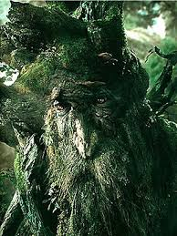 treebeard happy arbor day top 10 awesome trees time