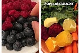 eat a vegan meal organicready
