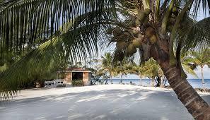 privatinsel mieten royal belize belize zentralamerika