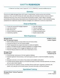 sample personal financial statement template mickeles