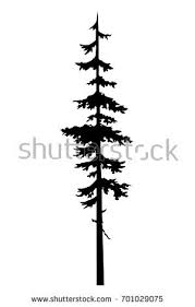 tattoo tree silhouette coniferous tree sketch stock vector