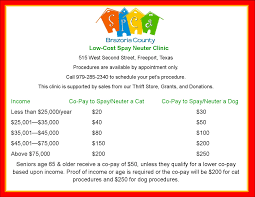 low cost spay neuter clinic spca of brazoria county