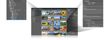 zoner photo studio x u2014windows software for editing and organizing
