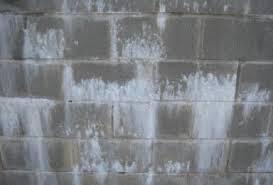 Mold On Basement Walls Cinder Block - basement waterproofing blitz mold pro
