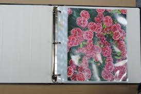 3 Ring Photo Albums 4x6 Dalee Book A Bindery Source For Albums Frames Binders And Refills