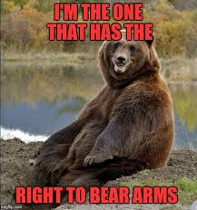 Right To Bear Arms Meme - i m the one that has the right to bear arms meme