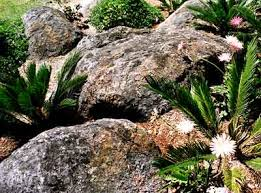 make your own boulders for your yard gardening pinterest