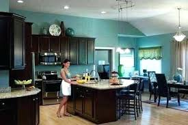 chocolate color kitchen cabinets u2013 petersonfs me