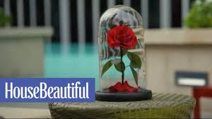 Forever Rose In Glass Dome These Real Enchanted Roses Will Last 3 Magical Years House