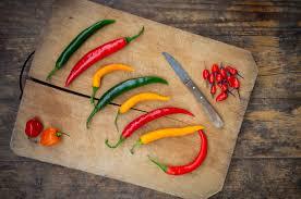 Chili Pepper Home Decor Home Decor Best Chili Pepper Home Decor Decorate Ideas Top With