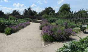 National Botanic Gardens Dublin by Botanic Gardens Teagasc Agriculture And Food Development Authority