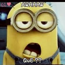 Memes De Los Minions - meme de un minion shared by sweetiebea on we heart it