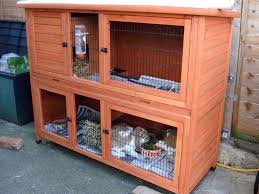 Rabbit Hutch For Multiple Rabbits Decorating Rabbit Hutches And Housing With Two Story Rabbit