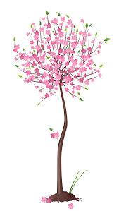 pink tree png clipart gallery yopriceville high
