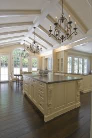 Kitchen Ceiling Lighting Ideas by 455 Best Ceilings U0026 Archways Images On Pinterest Kitchen Ideas