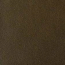 Leather Upholstery Fabric For Sale Stay Graffiti Kleen Vinyl Exotic Leather