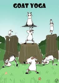 entry 2 by hellozek12 for illustrate goat yoga poses freelancer