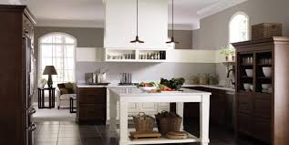 Kitchen Cabinets You Assemble Yourself by Cabinet Beautiful Design Home Depot Wall Ideas 17 Best Images