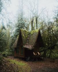 Tiny Cabin by Cozy Cabin In The Woods Tiny House Tiny Cabin Tiny Living