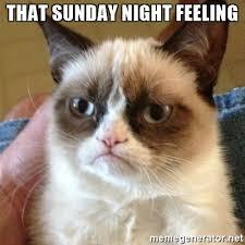 Its Sunday Meme - 20 memes about how we feel on a sunday night sayingimages com