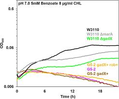 Benzoate and Salicylate Tolerant Strains of Escherichia coli K 12