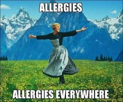 spring allergies as told through memes allergy memes
