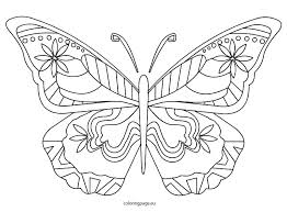 coloring pictures of small butterflies life cycle of a butterfly coloring page free printable butterfly