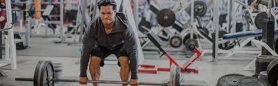 build max muscle with german volume training