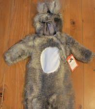 Baby Squirrel Halloween Costume Costumes Infants Toddlers 0 6 Months Ebay