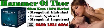 pesan antar 082218310994 jual hammer of thors asli original di