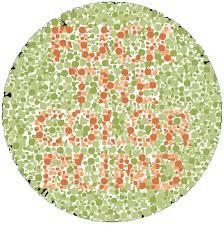 colour u201d stupid questions