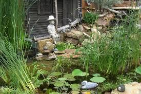 Fall Garden North Texas - all about dcmga denton county master gardener association