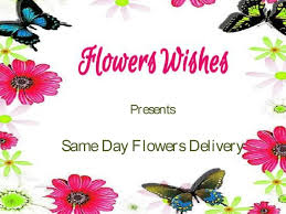 same day floral delivery 18 best flowers delivery in india images on beautiful