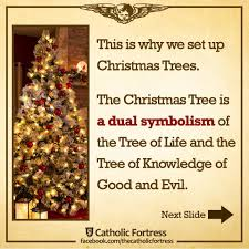 Symbolism Of A Tree by The Christmas Tree Is A Biblical Symbol Of Christ U2013 Catholic