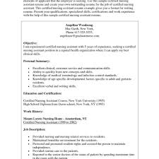 Programmer Resume Template Professional Programmer Cv Template Cv Template Hospitality Uk