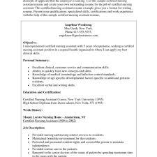 Resume Template Hospitality Professional Programmer Cv Template Cv Template Hospitality Uk