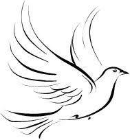 the 25 best dove tattoos ideas on pinterest small bird tattoos