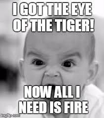 Eye Of The Tiger Meme - angry baby meme imgflip