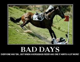 Horse Riding Meme - 306 best equestrian memes images on pinterest